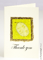 Handmade Thank You cards | Tropical Birthday Cards